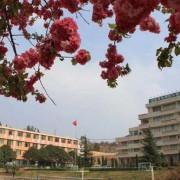 云南省园艺场学校